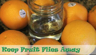 how to keep fruit flies away