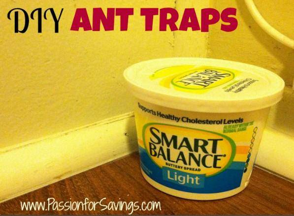 Diy Ant Traps How To Get Rid Of Ants In The Summer