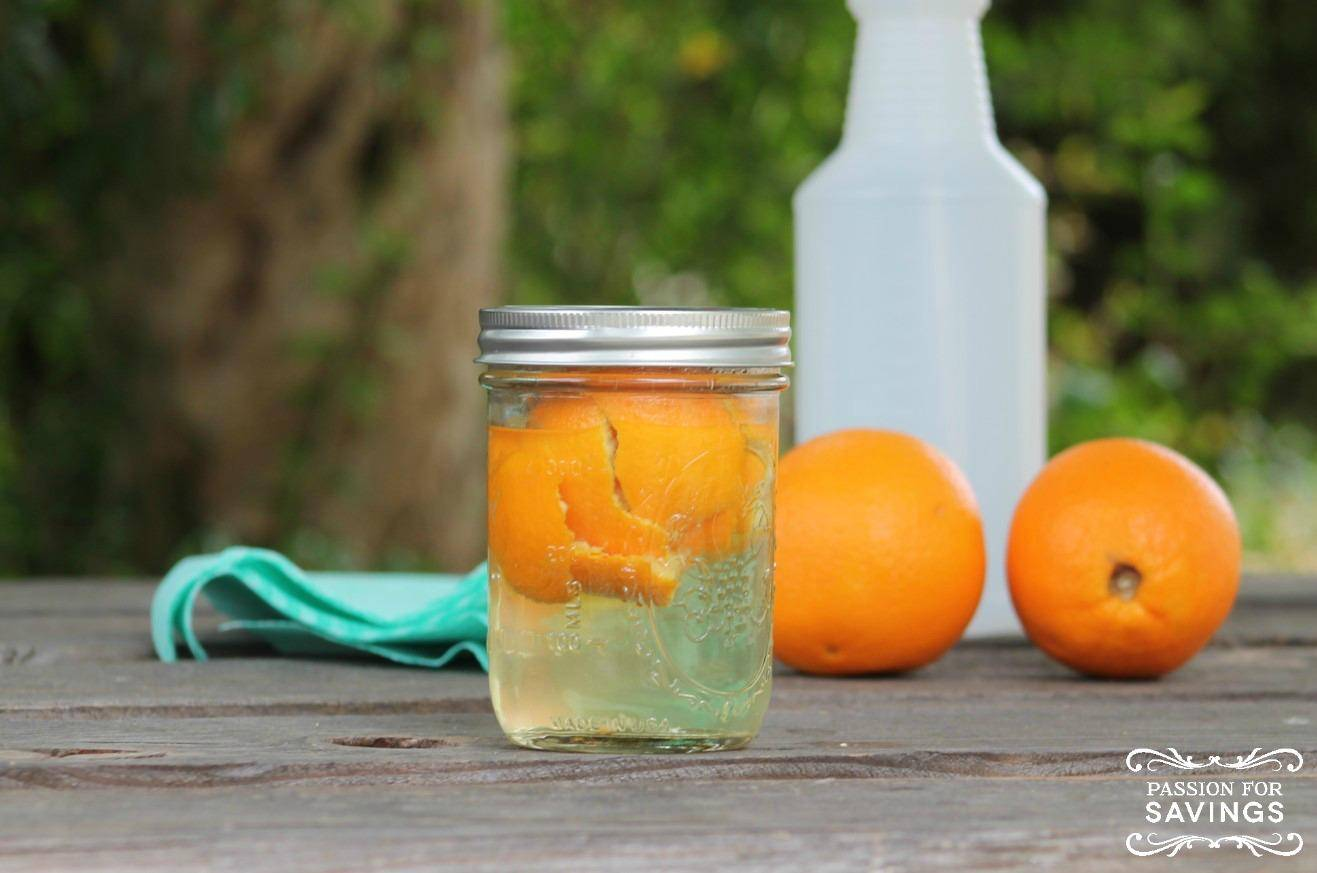 make your own orange all-purpose cleaner