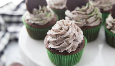 Chocolate Mint Cupcakes Recipe From Cake Mix