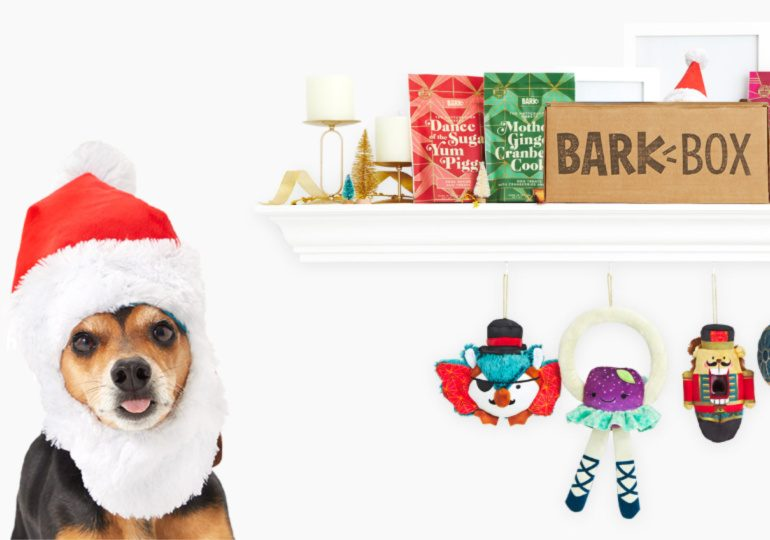 Bark Box Black Friday Deals